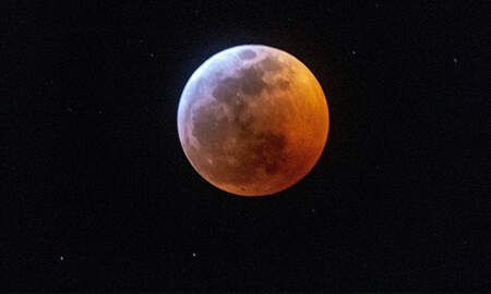 Weird News - Florida Cop Runs Over Couple Laying In The Street To Watch Super Blood Moon