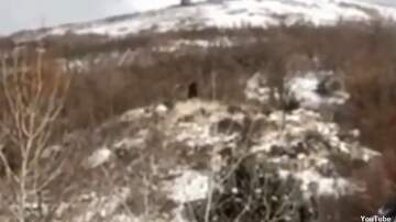 Coast to Coast AM with George Noory - Watch: Sasquatch Spotted in Utah?