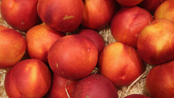 None - Fruit Sold at Walmart, Costco and Aldi Being Recalled Due to Listeria