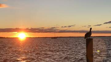 Kevin Matthews - My Florida Keys Vacation Photo Gallery!