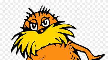 Bob McLaughlin - Who Wore It Better - AB84 or The LORAX?
