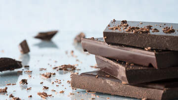 Robin - Chocolate Company Will Pay You to Travel Across Country in Chocotruck
