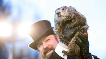 Randy McCarten - The Ground Hog Said What?  Does This Mean Early Spring?