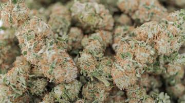 Capital Region News - Massachusetts Marijuana Sales Already Over $70 Million