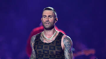 Wendy Wild - People Love That Adam Levine's Super Bowl Shirt Looked Like Curtains