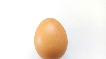 Robin - The World Record Egg Finally Cracked to Share a Sweet Message