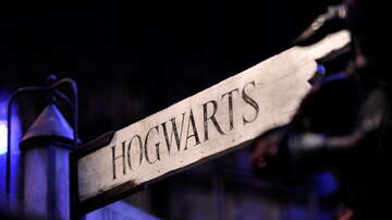 Robin - Harry Potter Beer Festivals are Real...And Not That Far Away