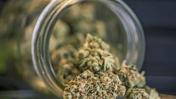 Marty and Jodi in the Morning - Study Says That Guys Who Smoke Weed Have Higher Sperm Counts