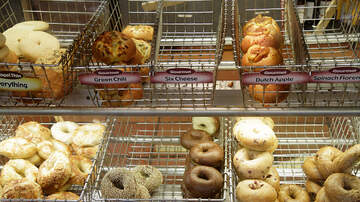 Lady La - You Can Get Free Bagel & Shmear At Einstein Bros This Saturday