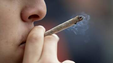 Local News Wire - Florida House Committee Passes Bill To Allow Smokable Medical Marijuana