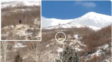 BC - Bigfoot Sighting In Utah....Do You Believe?