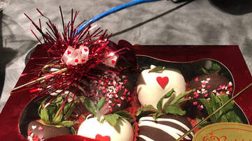 The Afternoon News with Kitty O'Neal - Friday Food: Berried In Chocolate With Shari Fitzpatrick