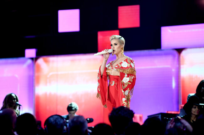 61st Annual GRAMMY Awards - Inside LOS ANGELES, CA - FEBRUARY 10: Katy Perry perfroms onstage during the 61st Annual GRAMMY Awards at Staples Center on February 10, 2019 in Los Angeles, California. (Photo by Emma McIntyre/Getty Images for The Recording Academy)