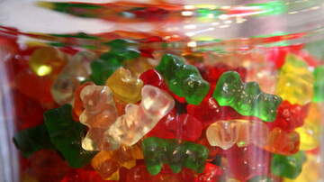 Woody and Jim - 45 lbs of drug laced Gummy Bears Discovered At Nashville Airport
