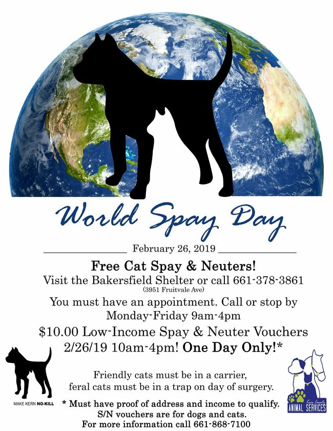 Click the photo for World Spay Day info!