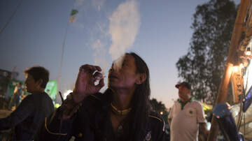 The Bushman Show - Berkley Divided On Weed Shops