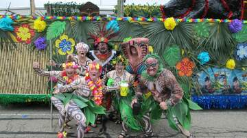 Photos - Denham Springs Mardi Gras parade pictures 2.23.19
