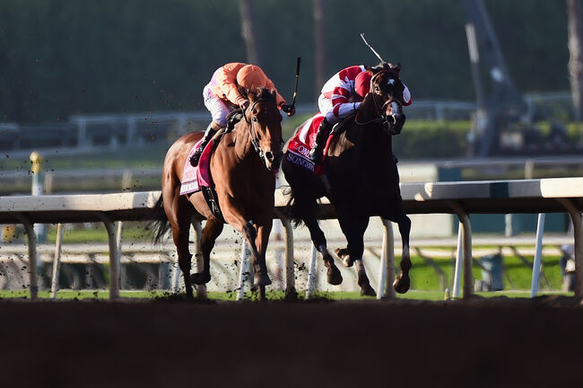 Santa Anita Facing Rash Of Racehorse Deaths Kfi Am 640