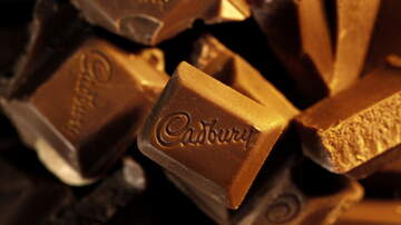 Todd Alan - Cadbury Wants To Pay You $14 And Hour To Eat Chocolate