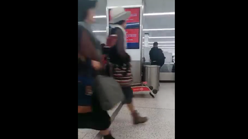JB - **VIDEO** Hilarious Video Of Female Airline Passenger Struggling With Cart