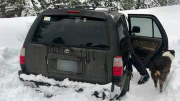 image for Man stranded in Oregon survived on Taco Bell sauce