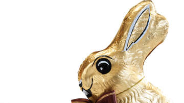 Courtney Lane - IKEA selling a Chocolate Bunny You Put Together Yourself