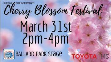 None - 4th Annual Cherry Blossom Festival