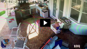 Rachel Lutzker - Boy Gets Trapped in Cooler Playing Hide and Seek