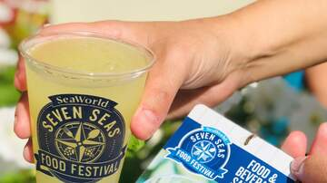 Photos - Sea World Seven Seas Food Festival