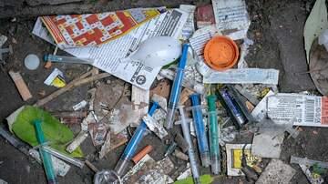 Brian Mudd - UN's Report Shows Record Recreational Drug Use