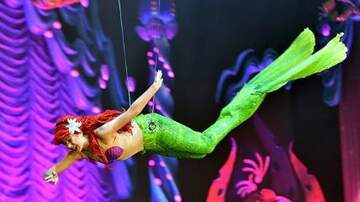 "Julie's - Now You Can Learn To Swim Like Ariel At Disney World's ""Mermaid School"""