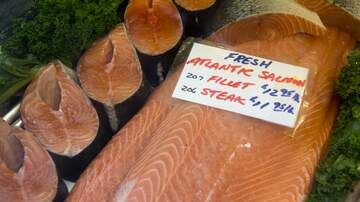 Memphis Morning News - The New Variety Of Salmon...Genetically Modified
