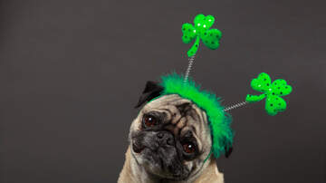 Lady La - Free Food & Deals For St. Patrick's Day