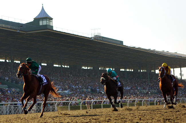 Santa Anita Bans Race-Day Medication in Wake of 22nd Horse Death