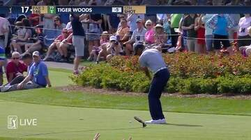 Sean Salisbury - WATCH: Tiger Woods Puts Two Balls in Water at Island Hole