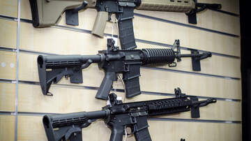 Florida News - NRA Lobbyist Warns Against Proposed Assault Weapons Ban