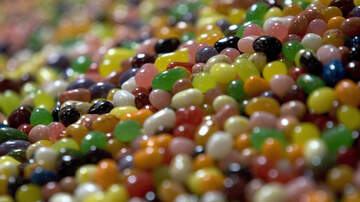 Nina Chantele - The Jelly Belly Creator Introduces CBD-Infused Jelly Beans