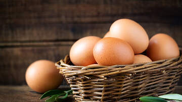 Amy James - Can You Answer This Riddle About Having 6 Eggs?