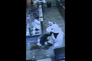 Man Dressed As Unicorn Accused Of Robbing Maryland Convenience Store