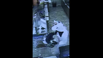 Weird News - Man Dressed As Unicorn Accused Of Robbing Maryland Convenience Store
