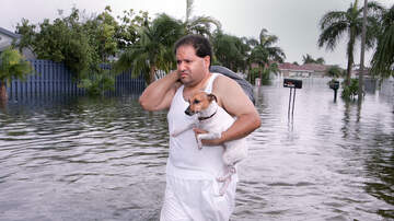 National News - Florida Bill Would Make it Illegal to Abandon Pets During Hurricanes