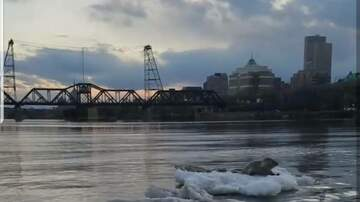 Capital Region News - Harp Seal Spotted in the Hudson River in Albany