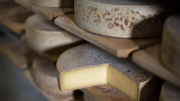 Jordan Henry - Scientists Played Different Types Of Music To Aging Cheeses