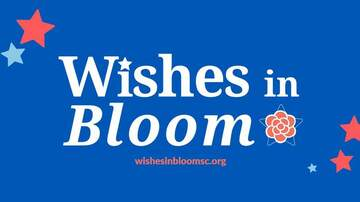 None - Wishes in Bloom 2019