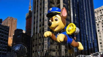 Sisanie - How Watching 'Paw Patrol' Is Actually Benefitting Your Kids