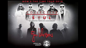 None - Collective Soul & The Gin Blossoms
