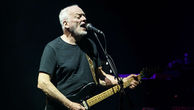 See Every Guitar In David Gilmour's Collection Going On Sale In June