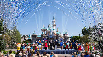 Dave Ryan - Disneyland Imposes New Ban in Parks!