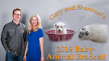 Gary and Shannon - Congratulations to the Winner of the 2019 Baby Animal Bracket!