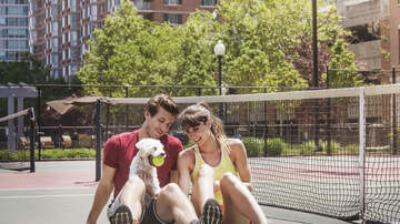 The Boxer Show - Randoms-Secret to Happiness in a Relationship, Most Desired Vacation Place